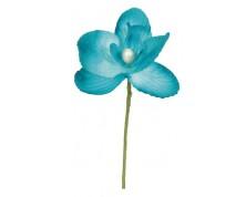 Orchidea (Colori Assortiti)