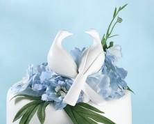 Cake Topper - Dolci colombe