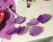 Petali con Foglie (Colori Assortiti)