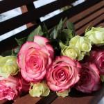 Un sito web per il tuo matrimonio? Facile, bastano pochi clic!